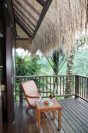 Nandini Bali Jungle Resort & Spa: A glimpse of the view from the room