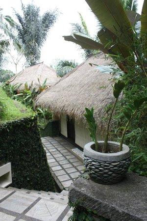 Nandini Bali Jungle Resort & Spa: Rooms