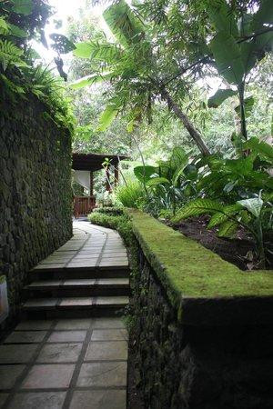 Nandini Bali Jungle Resort & Spa: Near the spa