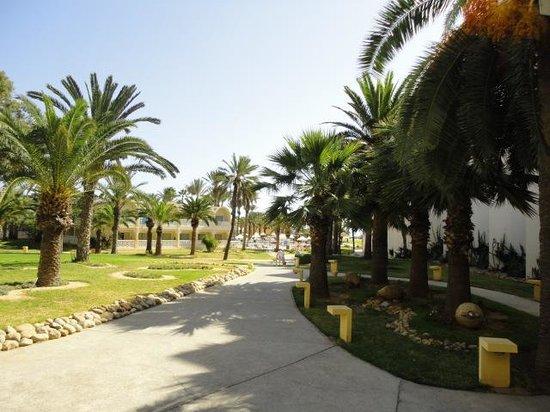 Hotel Marhaba Club: hotel grounds