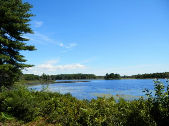 Hulls Cove Visitor Center: View of the pond
