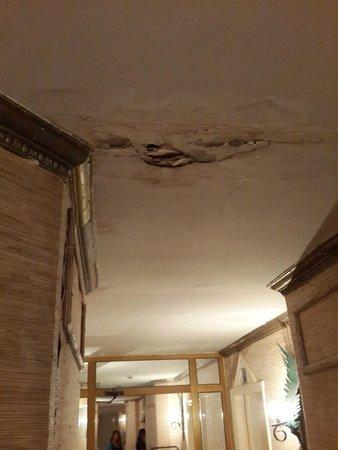 Victoria Palace Hotel & Spa: במסדרון של החדרים בקומה ה7 הקיר מתפורר מרטיבות
