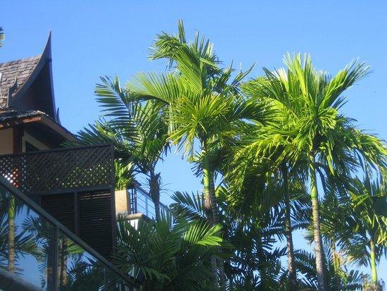 Ayara Hilltops Resort and Spa Surin Beach: Ausblick