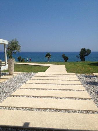 Kolymbia Beach Hotel : Direttamente sul mare