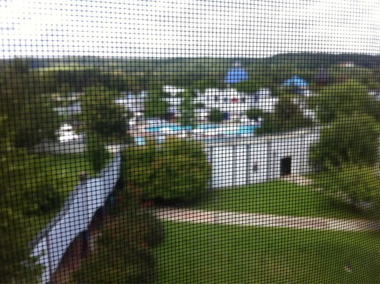 Rogner Bad Blumau: View from Stamhaus panoramic room-shame about mosquito mesh!