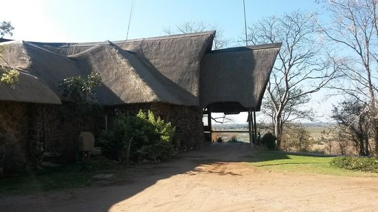 Muchenje Safari Lodge: The safari vehicles drive straight up to the entrance of the lodge