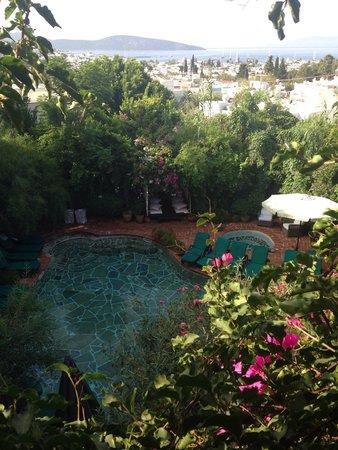 El Vino Hotel & Suites: Havuz deniz manzaralı