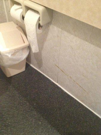 Britannia Country House Hotel : Clean your bathroom walls! Horrible