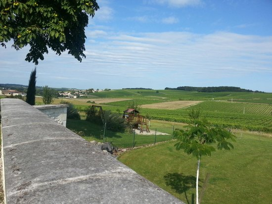 Le Relais de Saint Preuil: View from terrace