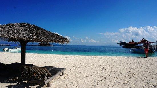 Scuba Junkie Mabul Beach Resort : Beach lounge with paradise view