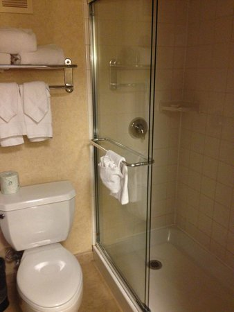 Wyndham Boston Beacon Hill: small but plenty of shower space