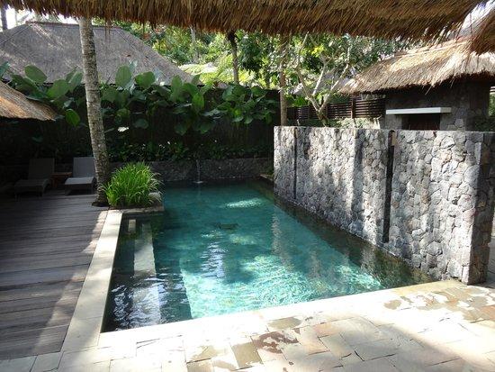 Kayumanis Ubud Private Villa & Spa: Pool