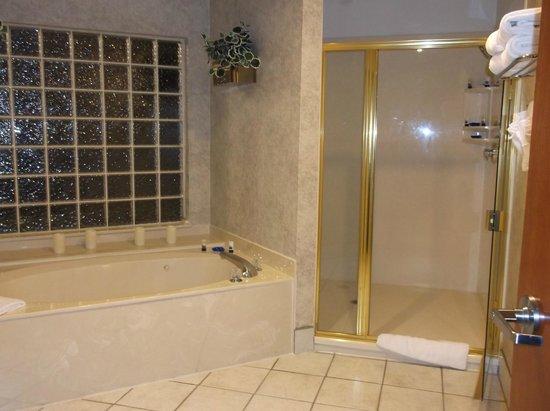 Best Western Executive Inn & Suites : beautiful bathing room