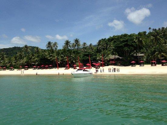 Anantara Rasananda Koh Phangan Villas: Hotel-Crew Empfang