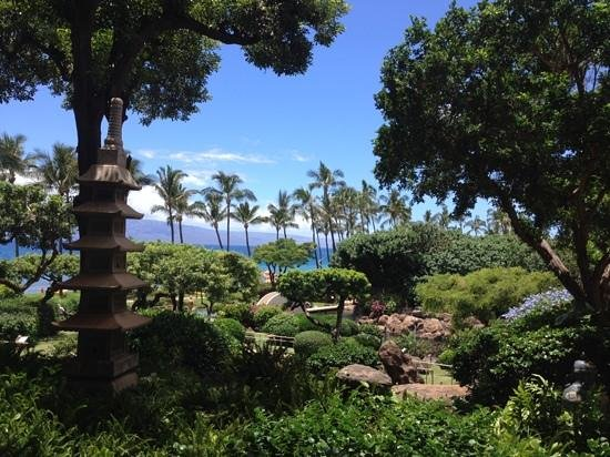 Hyatt Regency Maui Resort and Spa: The grounds around the Hyatt