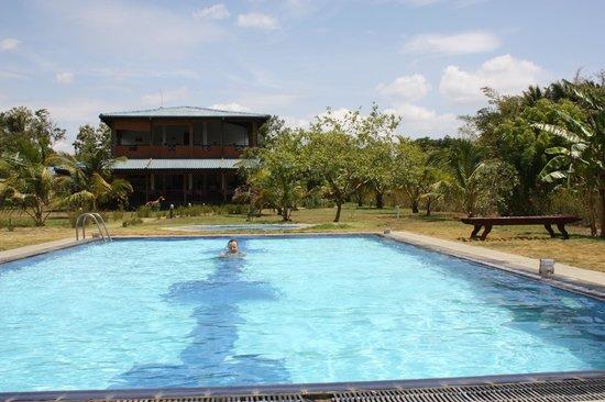 The Hideout Sigiriya: La piscine et au fond le guest house