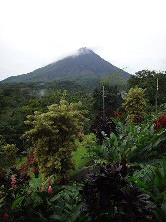 Arenal Kioro Suites & Spa: вид на сад и вулкан из номера