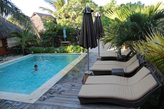 Green lodge: piscina