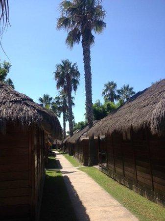 Camping Resort Sanguli Salou : bungalow bali