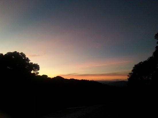 J Residence: morning view