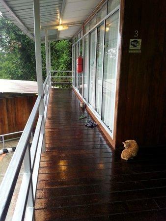 J Residence: hallway