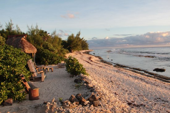 Green Lodge : spiaggia fronte albergo