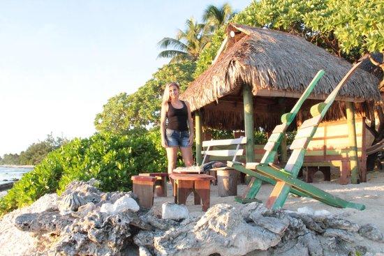 Green Lodge : spiaggia