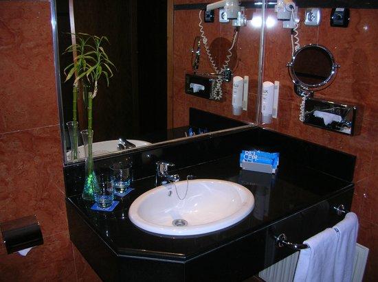 Tryp Madrid Alameda Aeropuerto Hotel: Bathroom