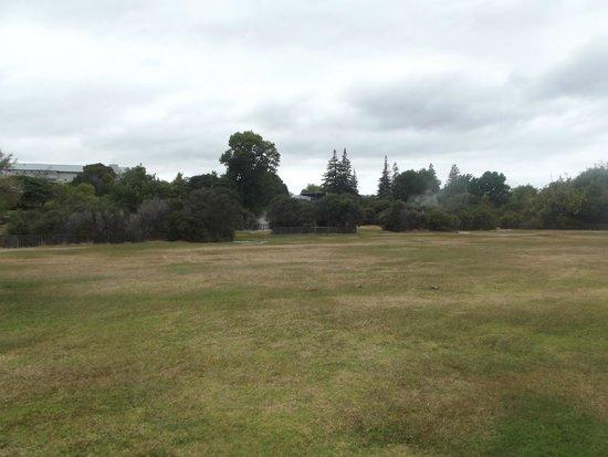 Wai-O-Tapu Thermal Wonderland: the area