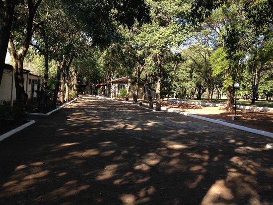 Agua Viva Thermas Clube Hotel: Área Verde