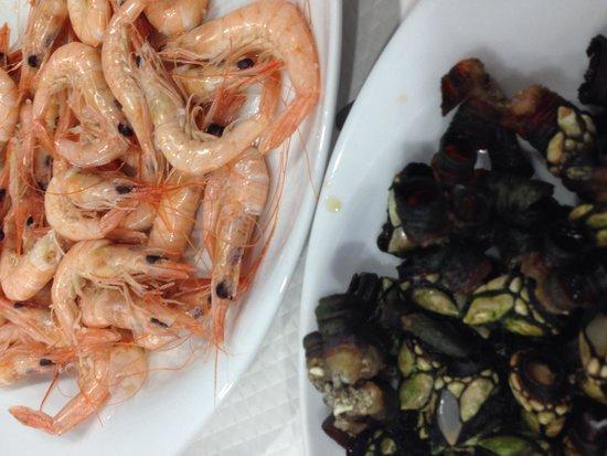 Marisqueira Santiago: Coast shrimps and barnacles