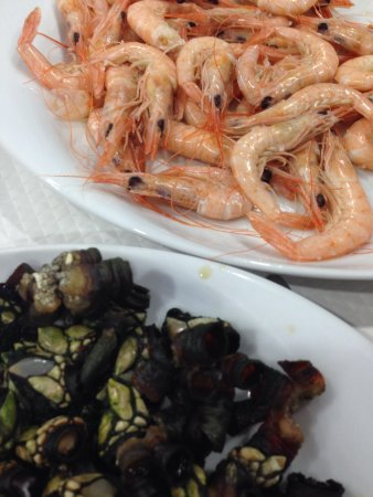 Marisqueira Santiago: Coast shrimps and barnacles