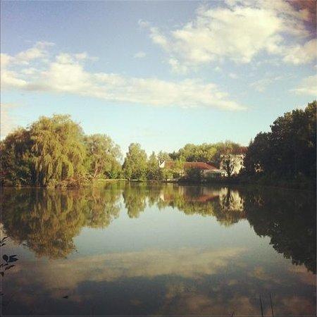 Le Moulin de Bray: Le moulin vu depuis l'autre côté de l'étang