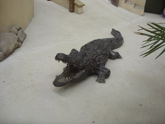 Crocodiles of the World: A work of art