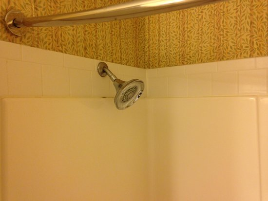 Inn On The Lakes: shower head
