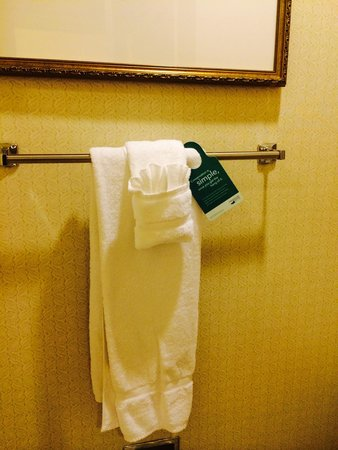 """Homewood Suites by Hilton Atlanta - Cumberland / Galleria : No towels  or tissue left """"after cleaning """""""