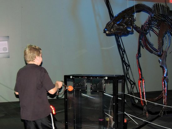 Saint Louis Science Center : playing with the dinosours.