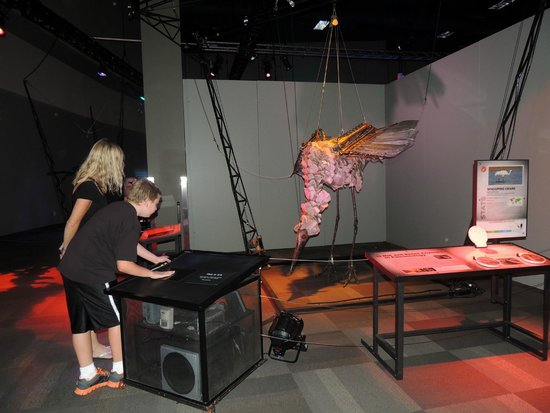 Saint Louis Science Center : interaction