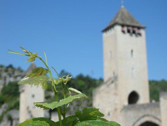 Pont Valentre : les symboles de Cahors : la vigne et le pont