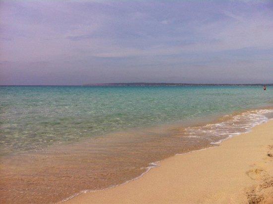 Strand Playa de ses Illetes: Chiare acque
