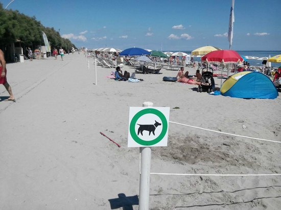 Лидо-ди-Помпоза, Италия: spiaggia cani