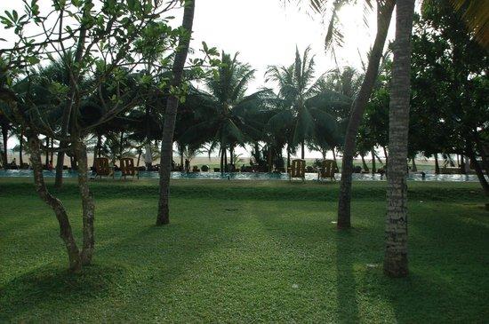 Jetwing Beach: Vue de la chambre