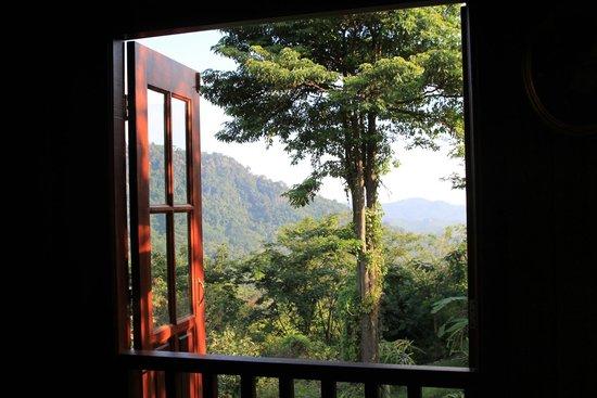 The Shorea : Living hall view