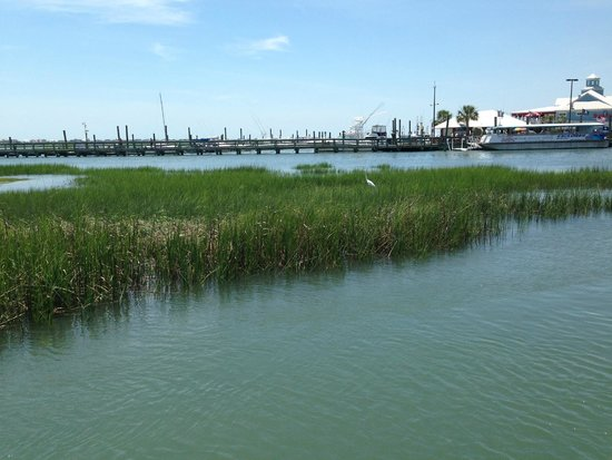 MarshWalk: Marsh Walk @ Murrells Inlet, SC