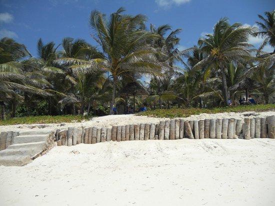 Baraza Resort & Spa : Playa Baraza Hotel