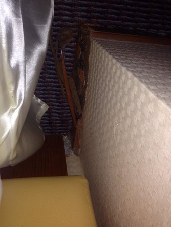 Paradise Sukhumvit: Chambre supérieur juste a côté du lit