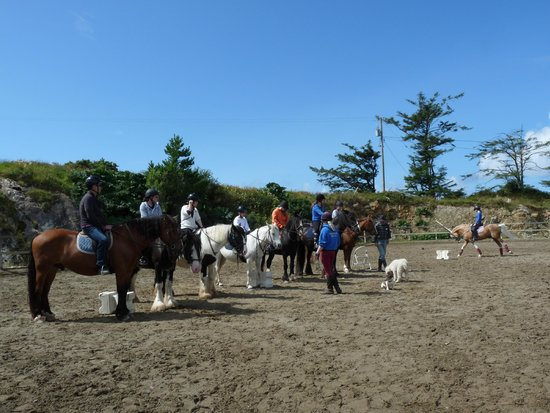 Cleggan Beach Riding Center - Horseback riding on the beach : Checking beforehand to ensure what everyone is capable of