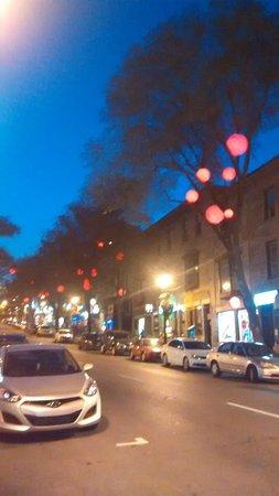 Auberge le Jardin d'Antoine : Rue St Denis - outside hotel