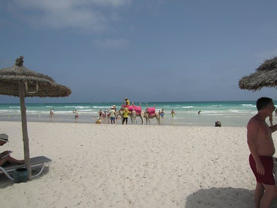 Djerba Plaza Hotel & Spa: jolie plage