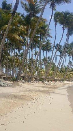 Luxury Bahia Principe Bouganville Don Pablo Collection: Hotel Beach